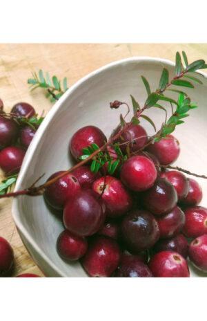 Fresh NZ Cranberries