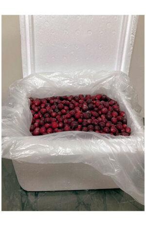 Frozen NZ Cranberries