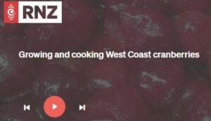 Radio New Zealand cranberry interview.